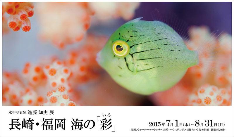 長崎・福岡 海の彩 水中写真家 進藤知史 写真展