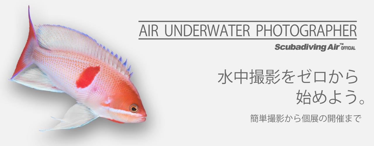 AIRの水中写真コースのご案内