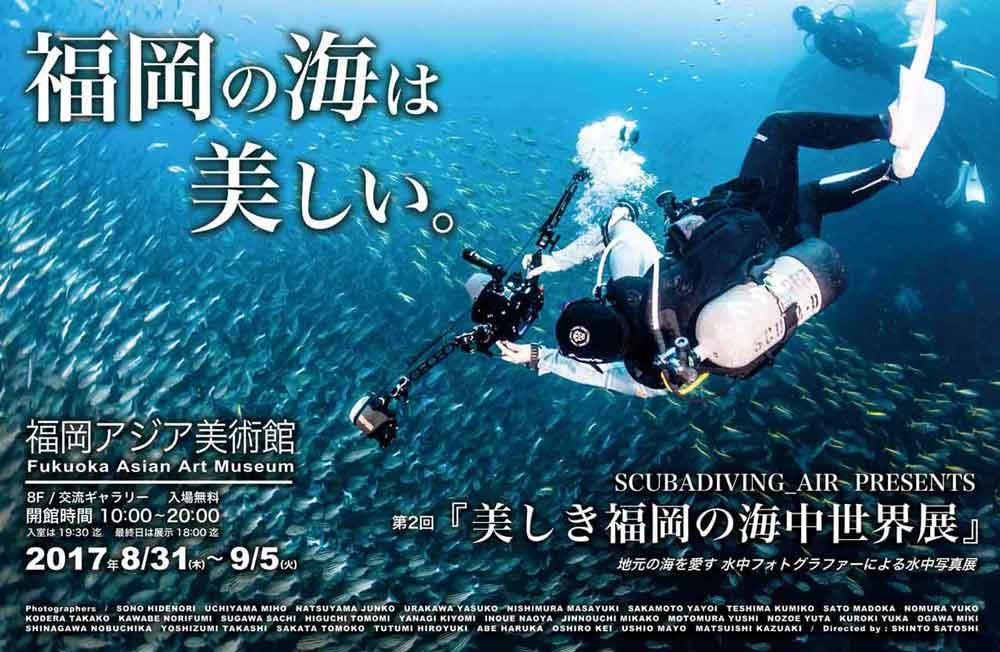 福岡の海は美しいへのリンク