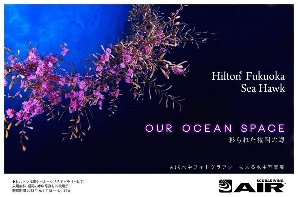 彩られた福岡の海