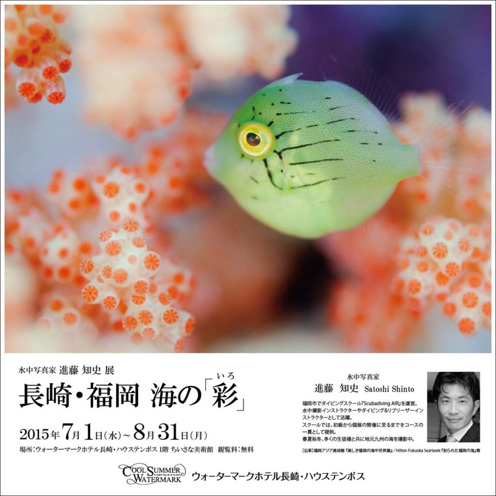 長崎・福岡 海の「彩」
